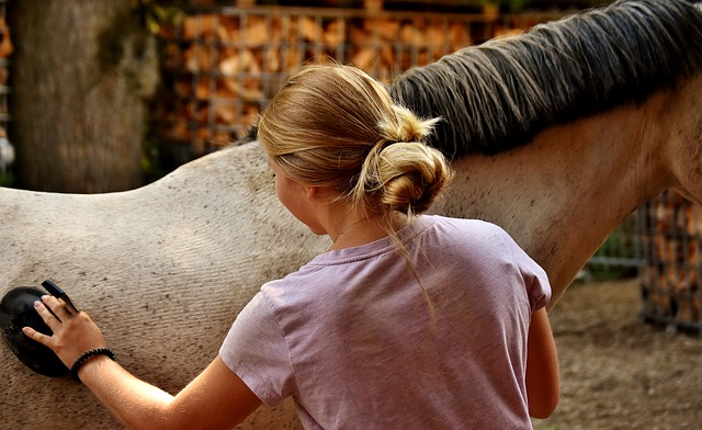 Dlaczego warto jeździć konno?